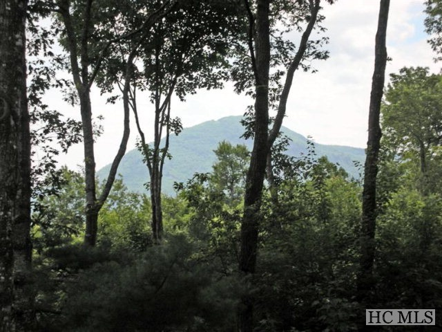 Lot 29 Branchwater Terrace, Glenville, NC 28736