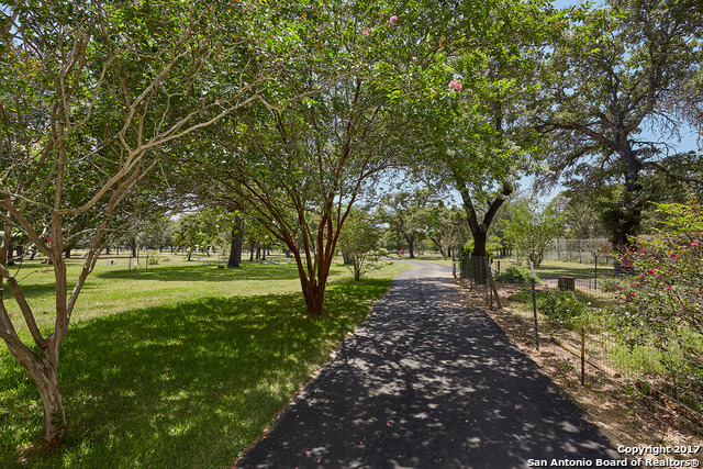 1843 Burr Oak Ln, Adkins, TX 78101