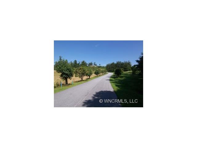 A`Virea - Beautifully situated lots in upscale gated community in area of fine homes and estates. Easy build, bring your contractor and choose your new home site. Convenient location, just minutes to shopping, schools and downtown activities. Pastoral and mountain views. Underground utilities, gas at Kanuga. OWNER FINANCING AVAILABLE!