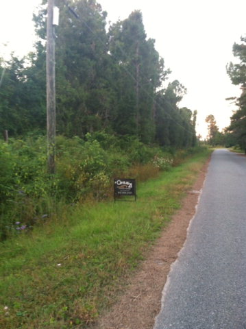 230 Wow Camp road, Brunswick, GA 31523