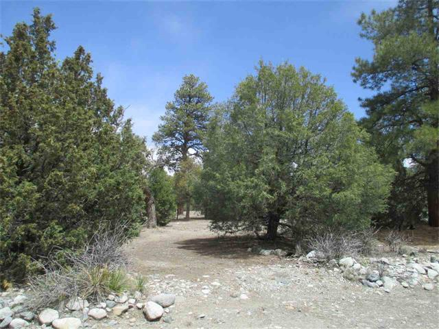 tract 8 Big ear Rd, Mosca, CO 81146