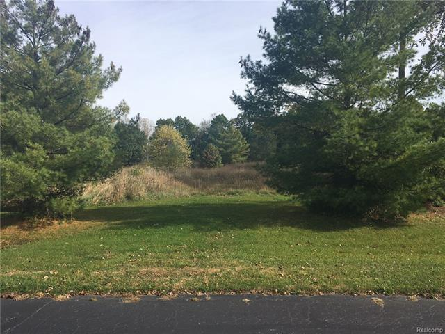 0 AUTUMN VIEW LN, Metamora Twp, MI 48455