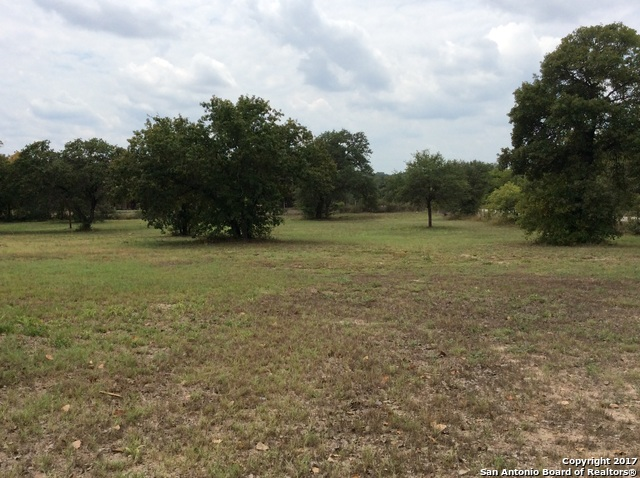 275 Stacey Rd, Poteet, TX 78065