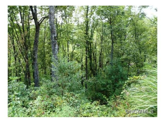 Nice sized lot in a great subdivision 10 minutes to downtown Asheville. There is underground fiber optic cable installed and 4 homes are built or are being built! Paved roads, city water and is perfect location. Come see!-