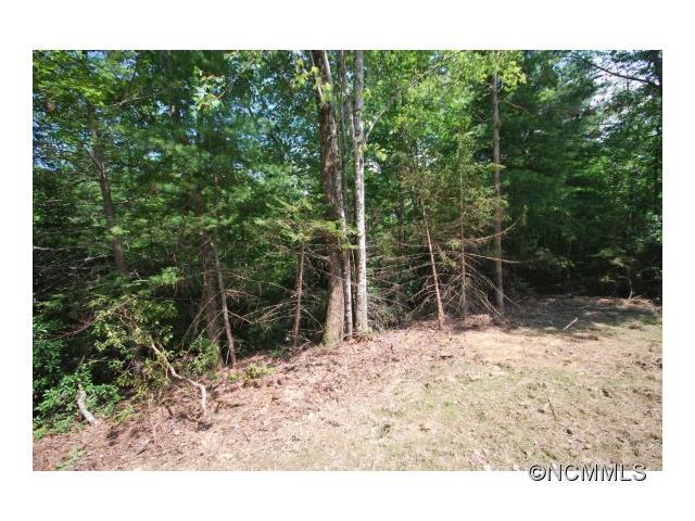 9 Ferndale 9, Pisgah Forest, NC 28768