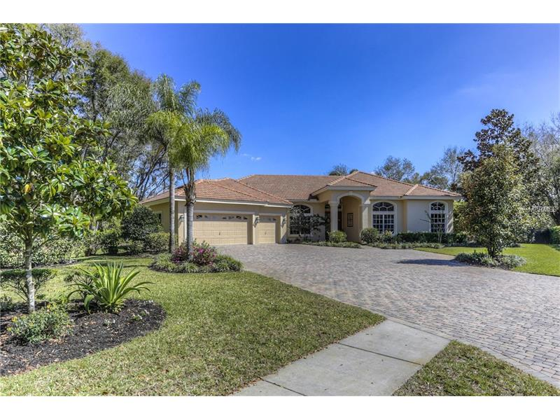 2509 SUMMER SNOW DRIVE, LUTZ, FL 33559