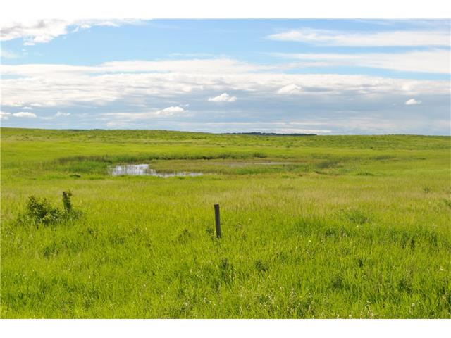 163038 township Road, Rural Starland County, AB T0J 0T0