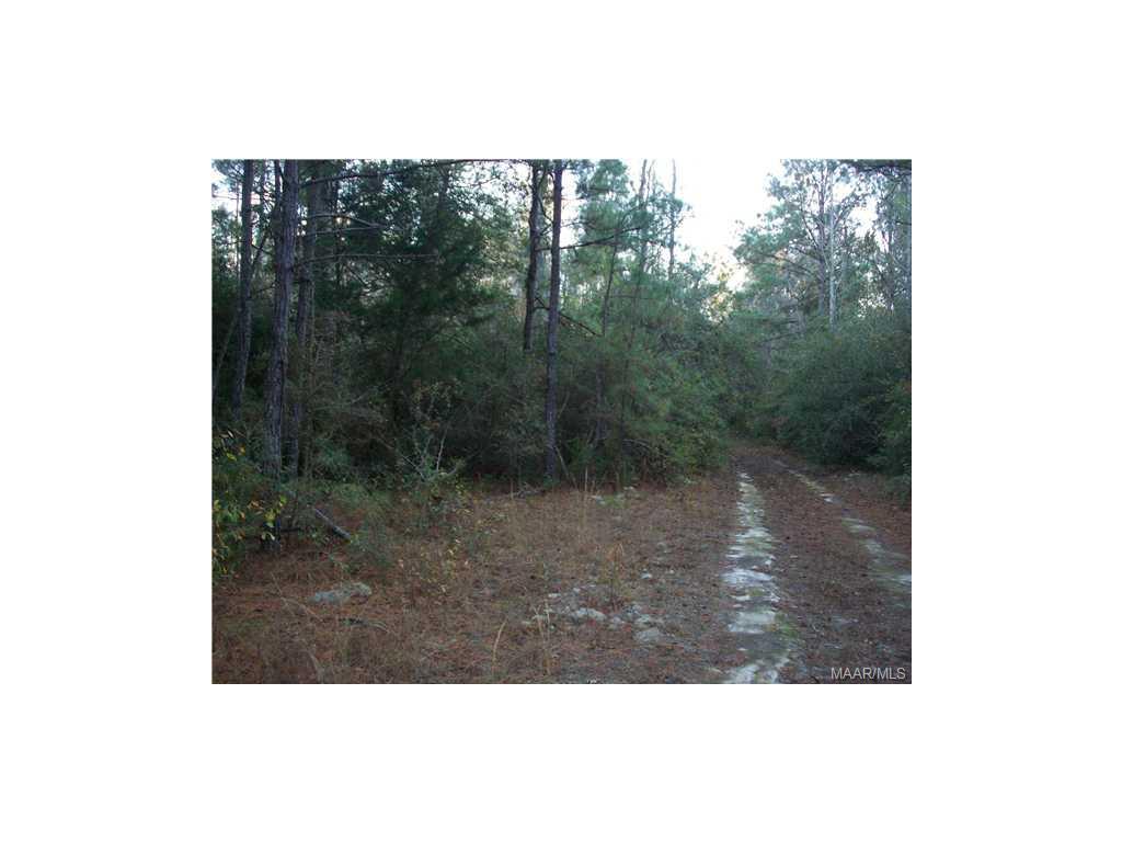 MILLS Road LOT 10, Prattville, AL 36067