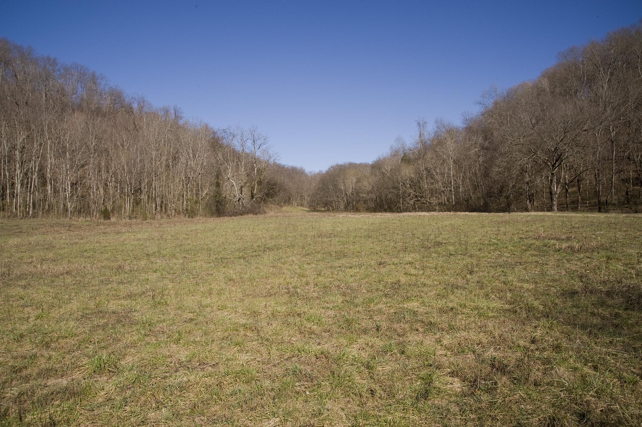 0 Straight Creek Rd, Wartrace, TN 37183
