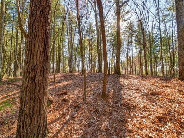 Very unique flat view lot. Be on top of ridge with level build site and long range mountain views in the heart of Cane Creek Valley. You don't have to be creative to see the potential of this lot.