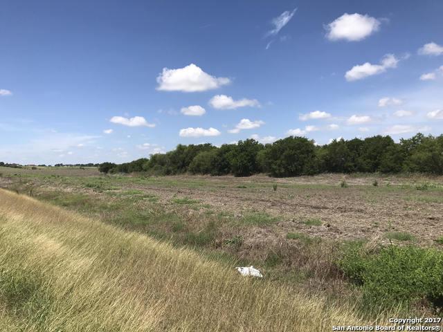 785 N ABBOTT RD, St Hedwig, TX 78152