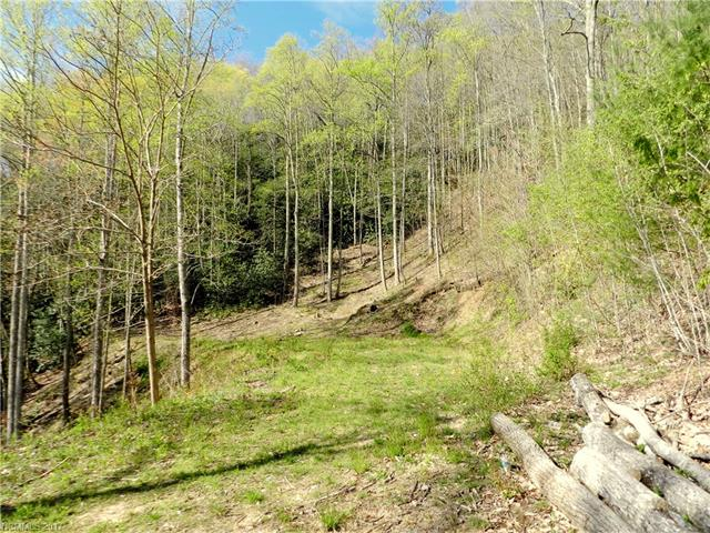 Great building lot with end of road privacy and nice views, especially in the winter. Level building site. Easy access from Fletcher and South Asheville. Expired 3 bedroom septic permit on file. Well needed.  Tax amount and taxes paid based on 2016 data.