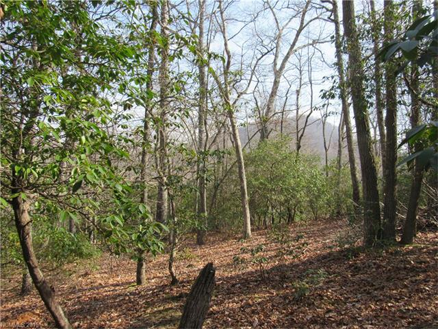 2008 Song Breeze Trail LOT 143, Arden, NC 28704