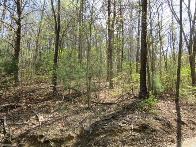 Lot 3 Mary Ruth Way, Clyde, NC 28721