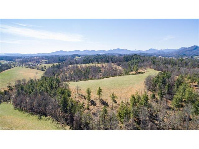 9999 Bob Wright Hill Road, Leicester, NC 28748