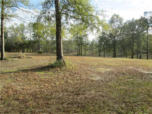 11233 HWY 38 None, Kentwood, LA 70444