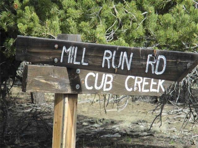 Tract 4 Cub Creek Place, Mosca, CO 81146
