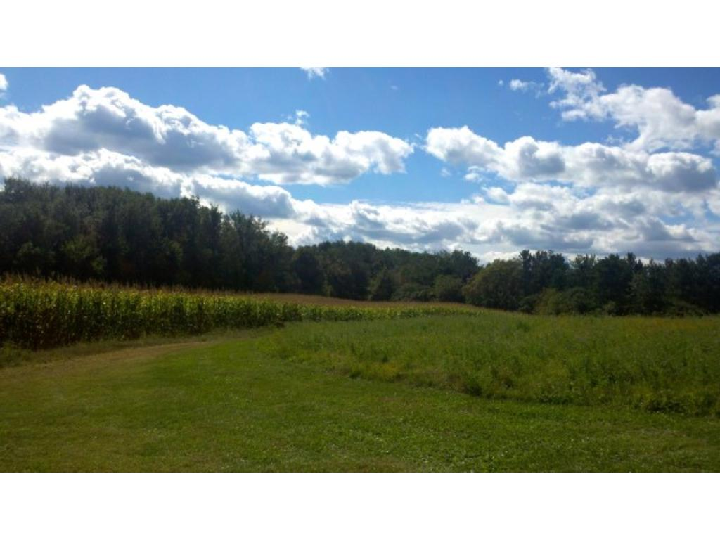 20 Acres Hwy 10, Arkansaw, WI 54721
