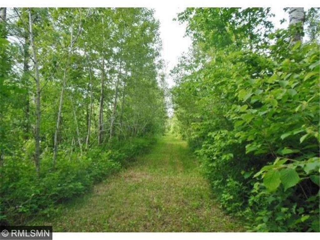xxx Hwy 133, Meadowlands, MN 55765