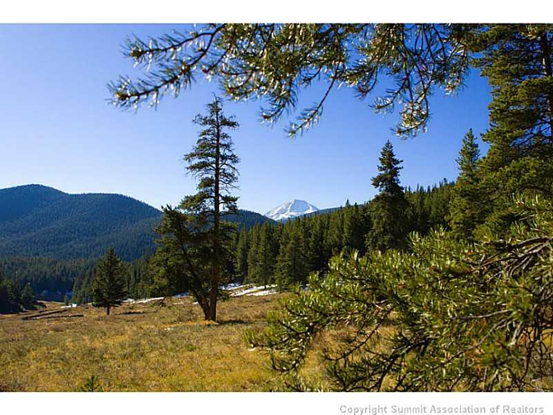 1050 Muggins Gulch Rd ROAD, BRECKENRIDGE, CO 80424