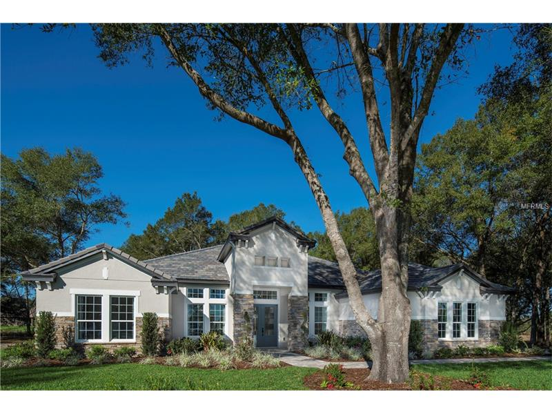 32211 RED TAIL BOULEVARD, SORRENTO, FL 32776