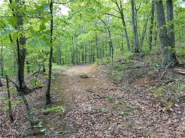 Hildebran Mountain Avenue, Connelly Springs, NC 28612