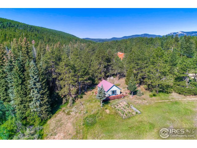 155 Cumberland Gap Rd, Nederland, CO 80466