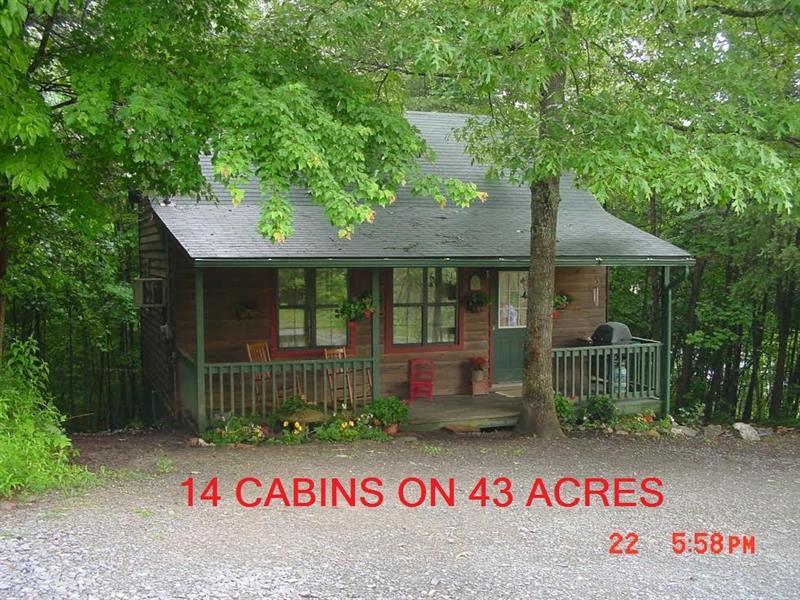 159 Back Pine Way, Ellijay, GA 30536