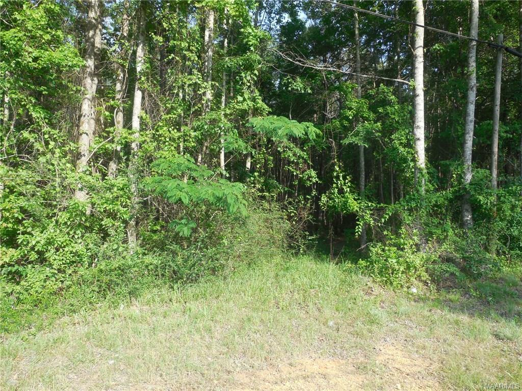 17462 CENTRAL PLANK Road, Eclectic, AL 36024