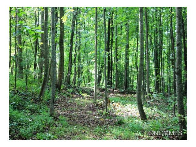 Private 10.72 acres located between Asheville and Hendersonville. 2BR septic system already in place.Depending on house placement, mountain views are possible.