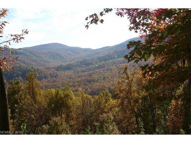 20 High Cliffs Trail 33, Black Mountain, NC 28711