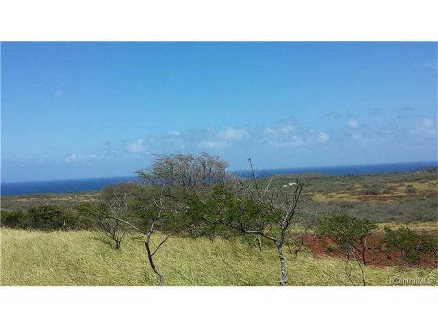 132 Ahiu Road, Maunaloa, HI 96770