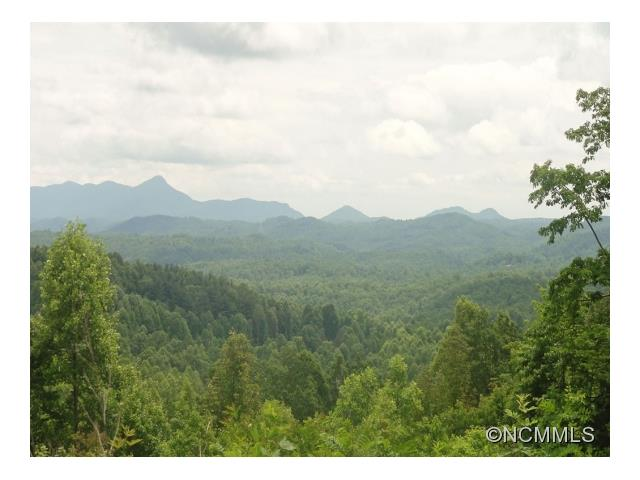 Enjoy incredible views on this 2.87 acre lot in beautiful Cobblestone Village. This home site offers expansive long-range Mountain views with gentle topography. Architectural drawings and 4-bedroom septic evaluation available. This is a wonderful location just outside the Village of Flat Rock near the Carl Sandburg National Historic Site and Flat Rock Playhouse.