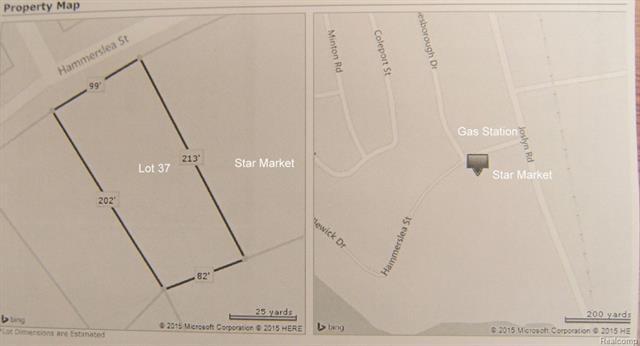Vacant Hammerslea Lot 37, Orion Twp, MI 48359