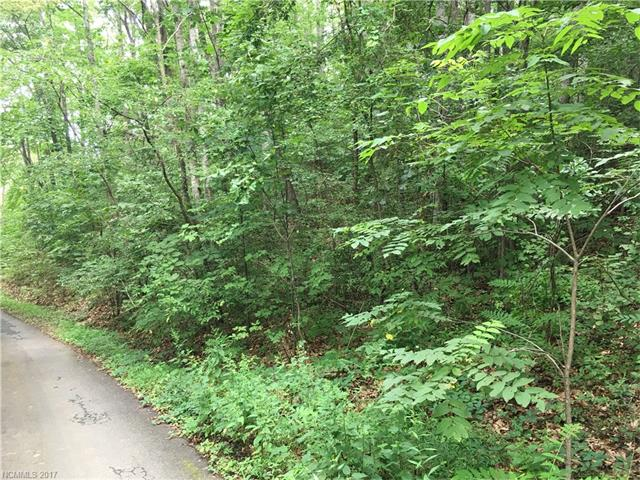 TBD Buckeye Access Road, Swannanoa, NC 28778