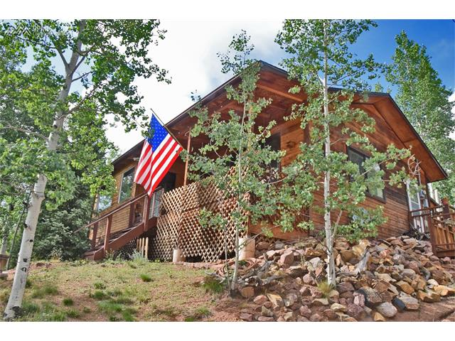 45 Deer Horn Drive, Cripple Creek, CO 80813