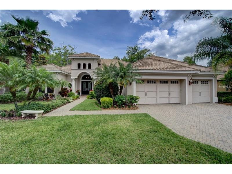 20733 LAKE VIENNA DRIVE, LAND O LAKES, FL 34638