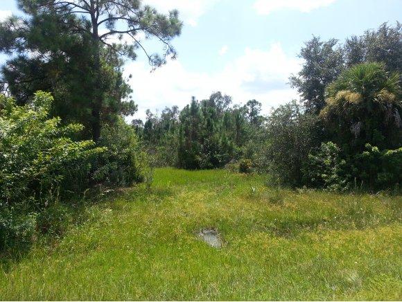 12313 - 12343 Tamiami Trail, Punta Gorda, FL 33955