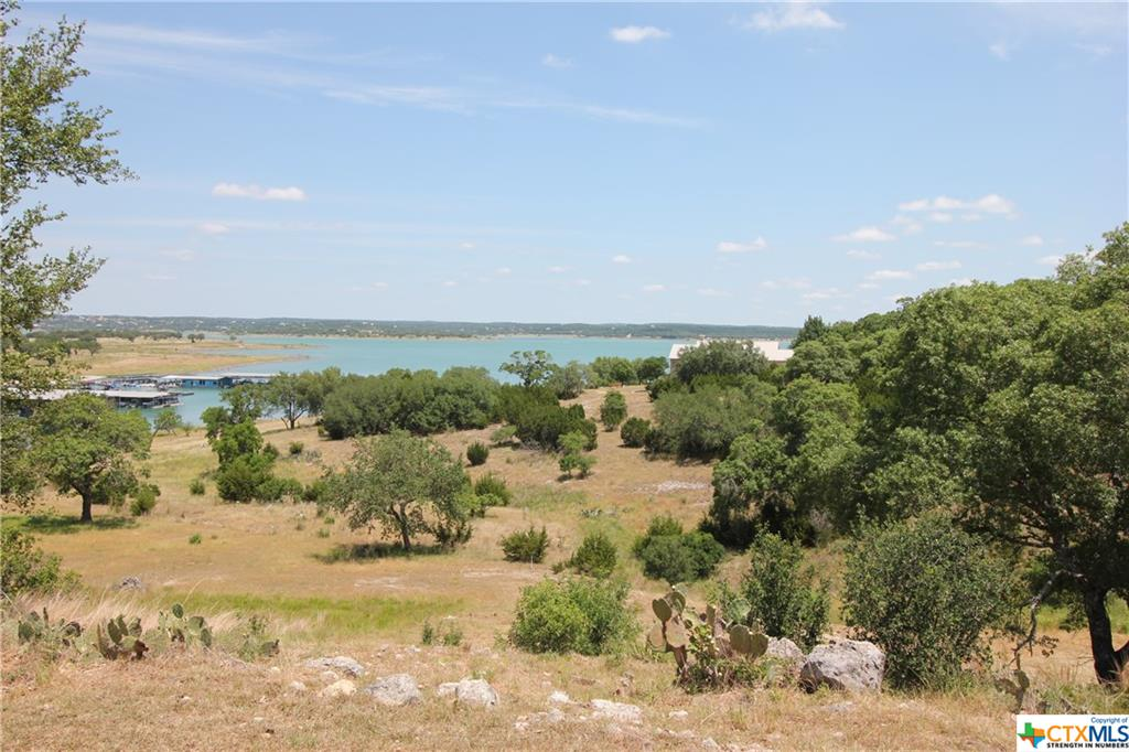 105 Shores Point Drive, Canyon Lake, TX 78133