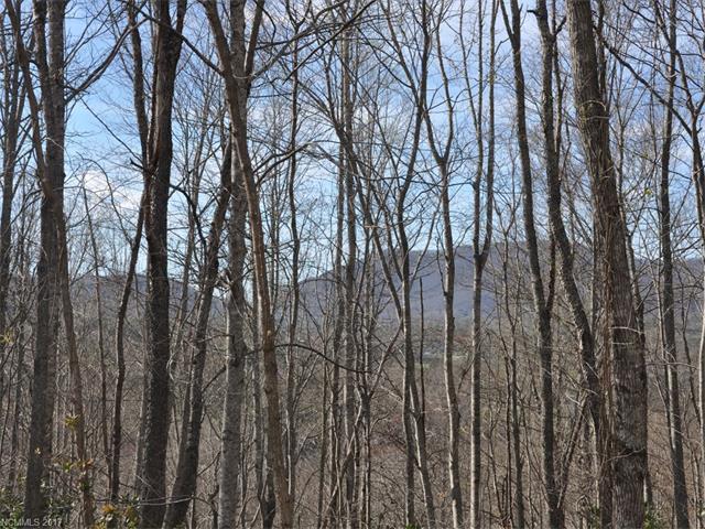 TBD Cane Creek Road 2, Fairview, NC 28730
