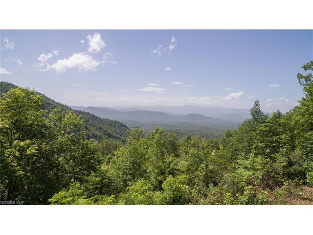 tbd Table Rock Road 827, Old Fort, NC 28762