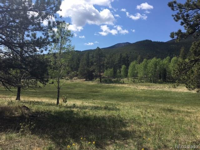 FS 117A Forest, Shawnee, CO 80475