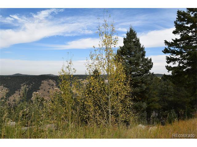 12838 Piano Meadows Drive, Conifer, CO 80433