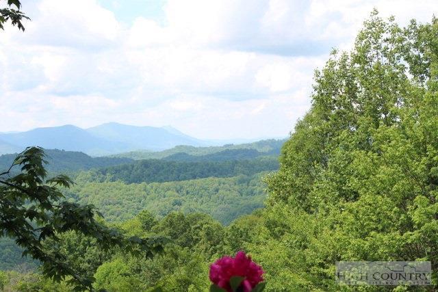 1315 Dream Mountain Road, Grassy Creek, NC 28631