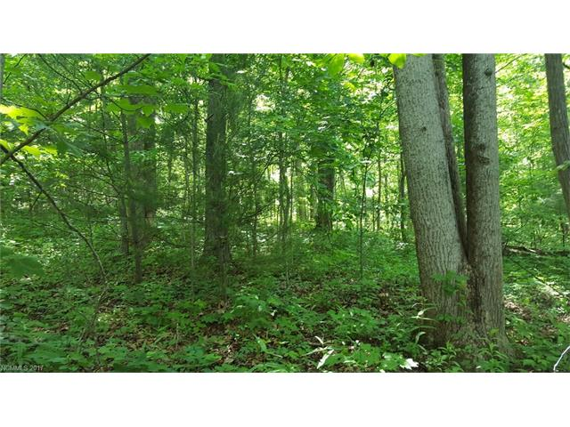 Gradual Sloping Residential Lot in Fletcher.  Great property for Building on Paved Public Road. (State Rd.) Easy Access! Great Location!