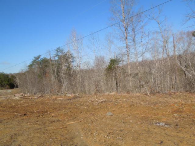 10 .03 Ac. Thunder Bay Trail, Burkesville, KY 42717