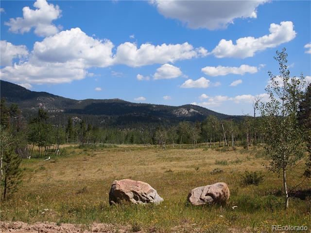 22 Tami Road, Red Feather Lakes, CO 80545