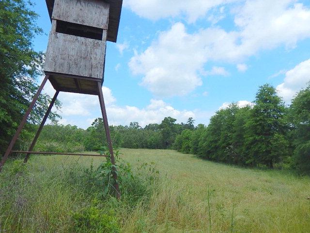 xx Oak Grove Road, Prentiss, MS 39474