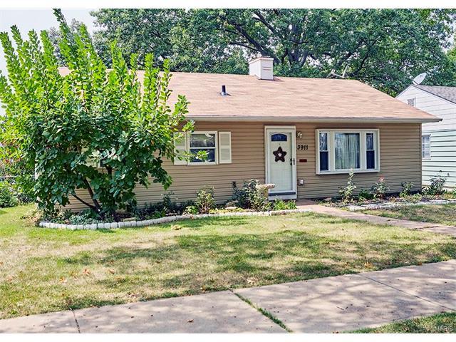 3911 Wenzlick Avenue, St Louis, MO 63109