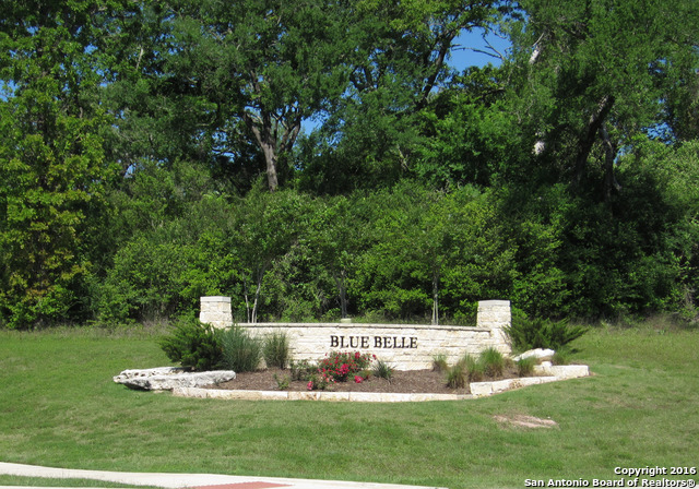 2946 Blue Belle Drive, Bryan, TX 77807